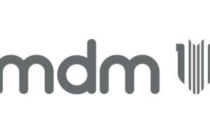 MDM Logo Inline Grey